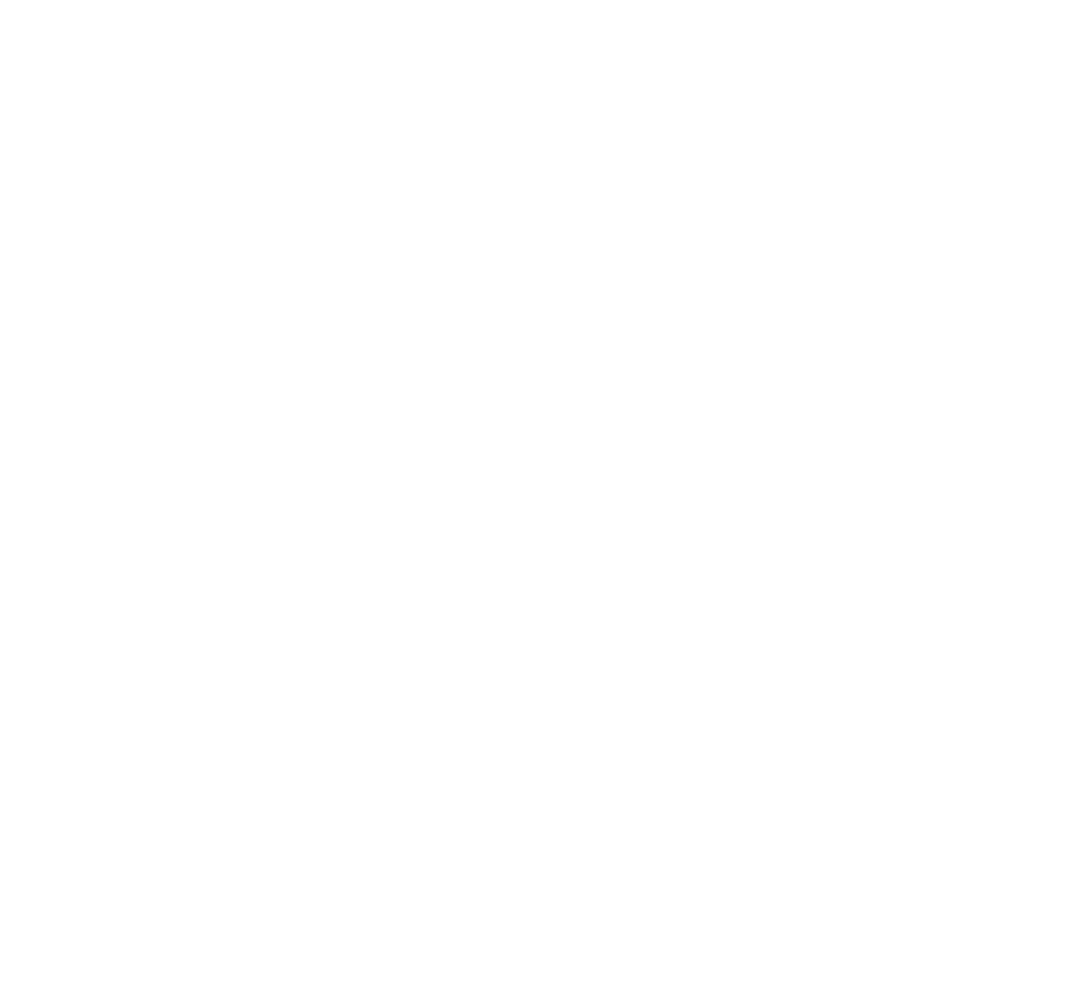 forceaviation_logo_white